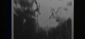 Rosetta Messori_IMPROVVISAMENTE LUCE