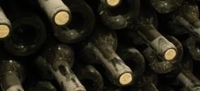 vino2 026