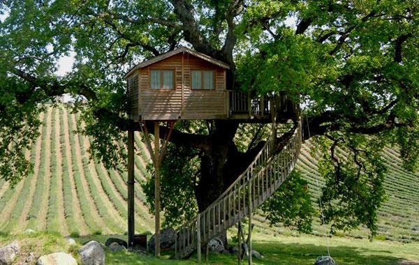Il significato della casa sull albero fool for Piani scozzesi della casa del castello dell altopiano