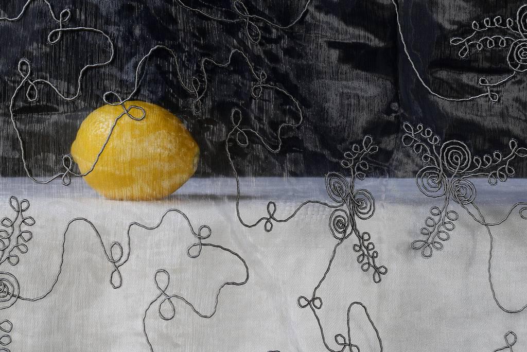 """""""Lemon"""", Saksia Boelsums"""